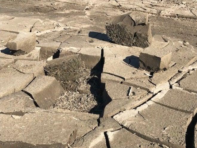 「レッズランド再生秘話」台風被災からの復興(1)「埼玉スタジアム3個分」が完全に水没の画像007