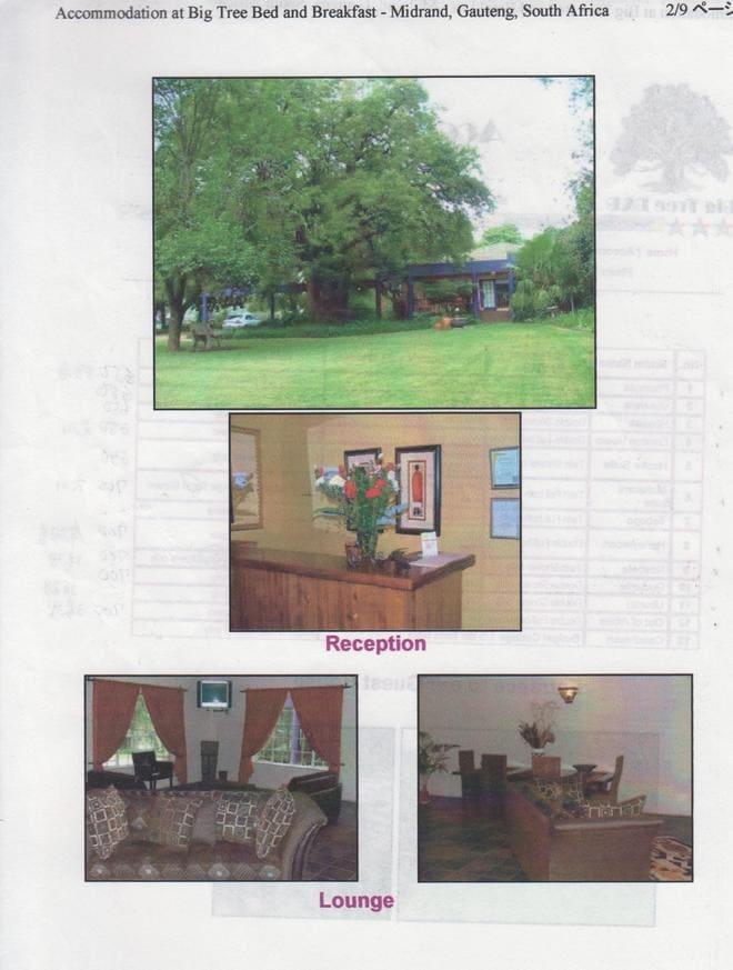 後藤健生の「蹴球放浪記」連載第46回「大木旅館の愛しのトリフィーナ」の巻の画像003